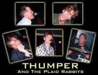 Thumper & Plaid Rabbits